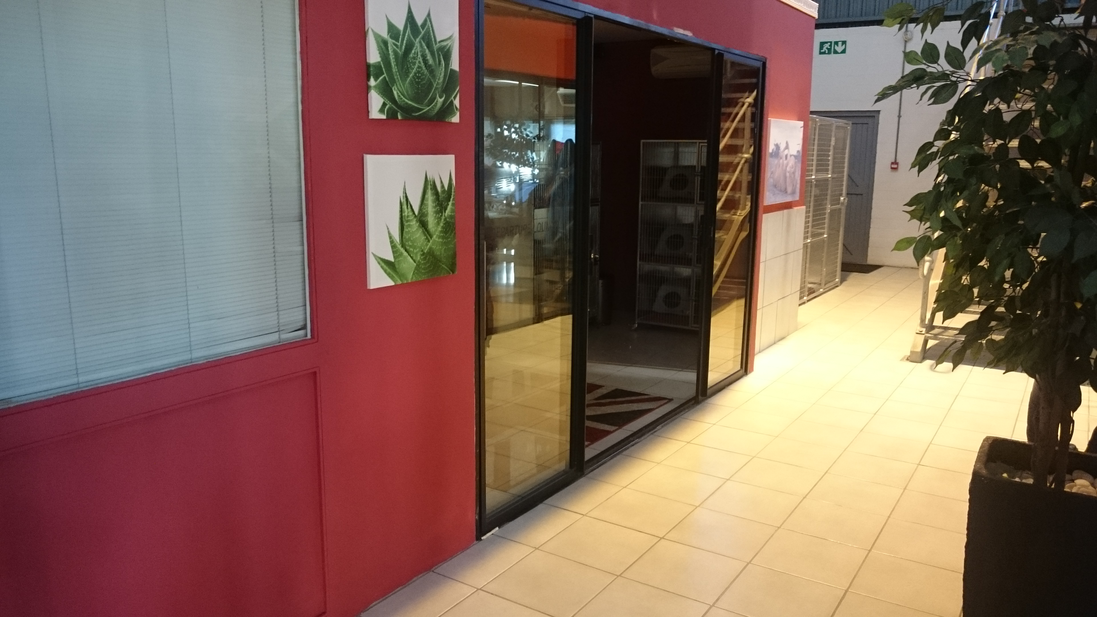Animal Travel Services Launches New Departure Lounge & Transit Kennels